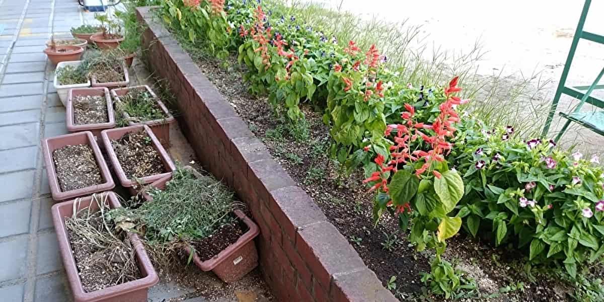 園芸 プランター 土
